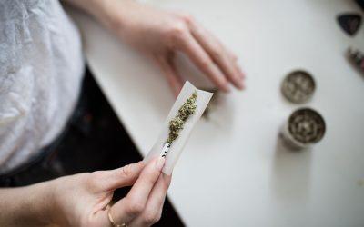 Document de positionnement : jeunesse et cannabis